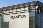 Đối tác của Apple - Pegatron có kế hoạch đầu tư 1 tỷ USD vào Việt Nam