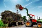 Áp thuế phòng vệ thương mại ngành mía đường: Cần hợp lý, đúng pháp luật và cam kết quốc tế!