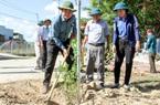 Ninh Thuận: Xây dựng mô hình đường hoa