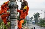 Tổng Cty Điện lực miền Trung lý giải nguyên nhân hàng loạt cột điện bị gãy trong bão số 5