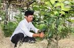 Hà Tĩnh: Bình Yên - khu dân cư giáo toàn tòng đầu tiên đạt chuẩn nông thôn mới kiểu mẫu