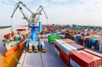 Kim ngạch xuất khẩu 9 tháng khu vực kinh tế trong nước  tăng cao 20,2%