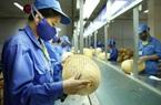 Công ty nợ lương, người lao động nên làm gì?