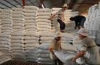 Phát lệnh xuất lô gạo 'mở hàng' năm 2021