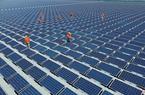 Không mua điện Trung Quốc để giải toả công suất điện mặt trời