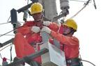 Áp lực từ lưới điện, chi phí đầu vào, giá điện có thể tăng trong năm 2021