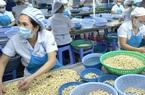 Ngành điều nhắm đến mục tiêu xuất khẩu 3,6 tỷ USD trong năm 2021