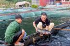 Tuyên Quang: Ở thị trấn này, đặc sản là thịt lợn chua, dâu tây, lại còn có cả loài cá râu dài