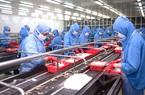 Các loại phí tăng phi mã, doanh nghiệp thủy sản lao đao