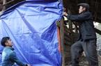 Chủ động phòng, chống đói rét cho đàn gia súc, Hà Giang giảm thiểu tối đa thiệt hại