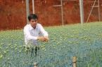 """Lâm Đồng: Người dân làm nông nghiệp công nghệ cao đang """"khát vốn"""""""