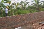 Hải Phòng: Dân chưa chuyển đổi thửa đất nông nghiệp, huyện đã đấu giá chuyển thành đất ở