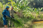 Dạy nghề gắn với hỗ trợ vốn, tìm việc làm cho nông dân