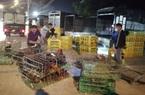 Bắc Giang: Cận Tết, chợ thu mua gà lớn nhất huyện Tân Yên ảm đạm, tiêu thụ giảm 30% so với năm trước