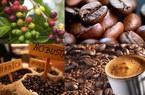 """Giá nông sản hôm nay (5/1): Cà phê khó vượt mốc 34 triệu đồng/tấn, giá lợn hơi """"tạm lắng"""""""