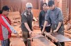 Lao động bị thu hồi đất nông nghiệp được đào tạo nghề
