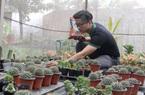 Đất trồng của chàng trai này có gì đặc biệt mà xuất khẩu được qua Singapore ?
