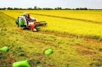 Vay thế chấp đất nông nghiệp được không?
