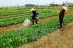 Chính sách đền bù đất nông nghiệp mới nhất