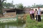 Phú Thọ: Áo hồng cánh sen tận tâm đưa vốn ưu đãi của Chính phủ đến với hộ nghèo