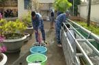 Bà Rịa - Vũng Tàu: Quân đội phát triển mô hình nuôi trồng thủy canh, cực kỳ hiệu quả và chống nhiễm mặn