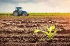 Năm 2021, bị thu hồi đất nông nghiệp có được tái định cư?