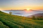 Đất nông nghiệp khác đất thổ cư thế nào?