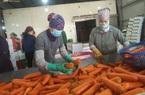 Hải Dương: Tiếp tục đề nghị Hải Phòng tạo điều kiện để xuất khẩu nông sản