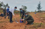 Quảng Nam: Bí thư và Chủ tịch tỉnh hưởng ứng phong trào trồng 1 tỷ cây xanh
