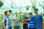 Hoa lan phi điệp đột biến 5 cánh trắng Phú Thọ trong vườn lan rừng của chàng trai An Giang, ai ngắm cũng trầm trồ