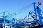 """""""Mở lộc"""" sau Tết, đưa tàu ra khơi, ngư dân tỉnh Bình Định đồng loạt phải hoàn tất thủ tục gì?"""