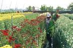Quảng Ninh: Covid-19 bùng phát như thế,TX Đông Triều làm cách gì mà giải cứu nông sản thành công hơn cả mong đợi?