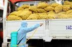 Nông dân Hải Dương, Quảng Ninh điêu đứng vì Covid-19, Bộ NNPTNT đề nghị báo cáo nhanh tình hình sản xuất