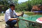 Quảng Nam: Cách làm giàu độc lạ-mô hình nuôi thú rừng ở Nam Giang