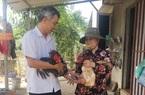 Bà Rịa-Vũng Tàu: Nuôi heo rừng, nuôi gà Đông Tảo bán đắt hàng dịp Tết, gà chân rồng có con bán tới 10 triệu đồng