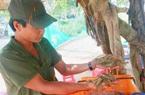 Long An: Giá tôm thẻ bất ngờ tăng cao ngày áp Tết, nhưng nông dân đang mong muốn điều gì?