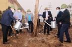 Ninh Bình: Hưởng ứng chương trình trồng mới 1 tỉ cây xanh