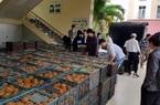 Hội Nông dân tỉnh Thanh Hóa bán hết veo 30 tấn cam sành cho nông dân Hà Giang