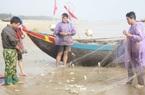 Về Cẩm Xuyên xem ngư dân săn cá trích, bỏ túi cả chục triệu đồng mỗi ngày