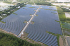 Hậu Giang: Lần đầu tiên có nhà máy điện mặt trời, vốn đầu tư 700 tỷ đồng