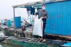 Hải Dương: Nông dân chóng mặt vì giá thức ăn chăn nuôi liên tục tăng