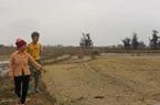 Hà Tĩnh: Lão nông cứ hễ ai chê ruộng là thuê về làm, mỗi vụ lãi hàng trăm triệu đồng