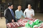 """Phân Ba con bò của Shark Tam có gì đặc biệt mà Chủ tịch Hội NDVN gọi là """"món quà quý tặng nông dân""""?"""