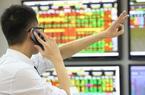 VN-Index 'phá đỉnh' lên mốc 1.216 điểm, cổ phiếu 'vua' dẫn dắt thị trường