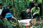 """Lần đầu tiên tại Cúc Phương: Sẽ tổ chức tour du lịch """"Về nhà"""" liên quan đến tái thả động vật hoang dã"""