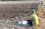 Đồng Nai: Có 2 nhà máy đường, một phá sản, một đắp chiếu, người trồng mía... bỏ mía