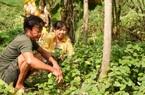 """Sống trong """"rừng""""...Thủ Thiêm, vợ chồng ông nông dân trồng cây gì, săn bắt con gì để nuôi con cháu?"""