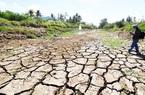 Nguy cơ hạn mặn ở miền Tây gia tăng trong tháng 4, Thủ tướng Chính phủ chỉ đạo khẩn