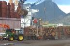 Việt Nam đứng thứ 10 về thị trường cung cấp gỗ nội thất cho Pháp