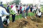 Quảng Nam: Cán bộ, hội viên nông dân Điện Bàn trồng 4.000 cây ăn quả